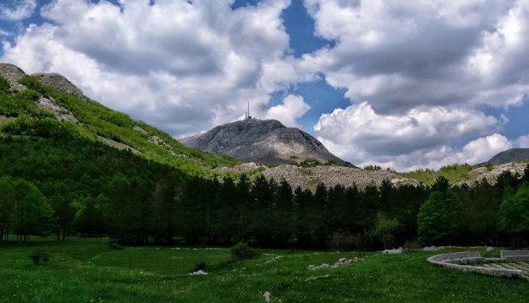 Čuvamo li naše parkove i ekološku Crnu Goru?