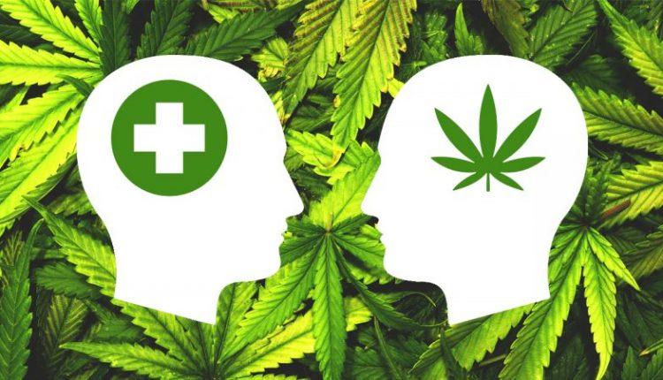 Kako marihuana utiče na naše tijelo i mozak?