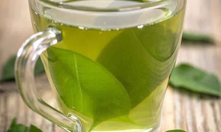 Zeleni čaj za dugovječnost